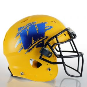 1 Color Matte Chrome Football Helmet Decals