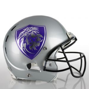2 Color Matte Chrome Football Helmet Decals